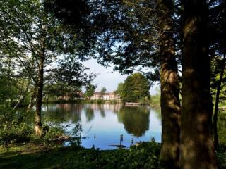 The Cowslip Cottage located in Bridgwater, Somerset - Bridgwater vacation rentals