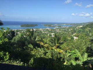 Iya Ites Jamaica - Port Antonio vacation rentals