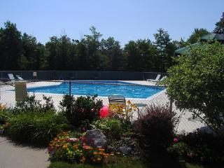 Charming 4 bedroom Harbor Springs Apartment with Internet Access - Harbor Springs vacation rentals