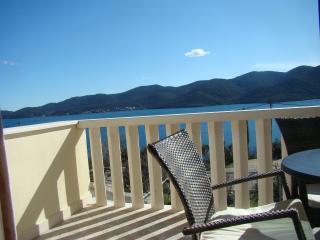 Apartments Dalmatin  -  BORDEAUX - Viganj vacation rentals