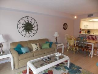 Bright 1 bedroom Condo in Diamond Beach with Internet Access - Diamond Beach vacation rentals
