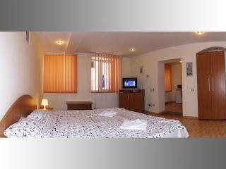Cozy Sibiu Studio rental with Internet Access - Sibiu vacation rentals