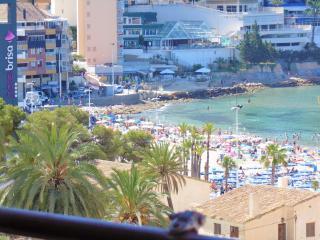 Coblanca 773 - Benidorm vacation rentals