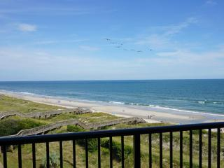 Sandpiper Run B5C - Oceanfront - Pawleys Island vacation rentals