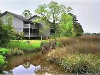 St Simons Island Marshfront Condo with Pool - Saint Simons Island vacation rentals