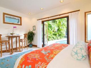 Nice Studio with Washing Machine and Television - Kailua vacation rentals
