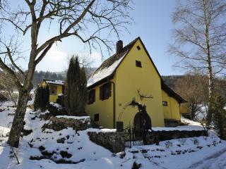 Ferienhaus Stahl in Freiburg-Kappel - Freiburg im Breisgau vacation rentals