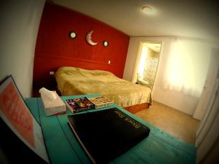 Apartamento grande y céntrico - Guanajuato vacation rentals