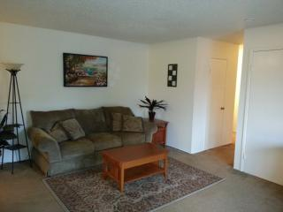 Large Furnished One Bedroom Close To Shopping And Google Shuttle - Mountain View vacation rentals