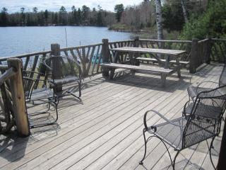 Beautiful Cabin with Deck and Private Fishing - Mercer vacation rentals