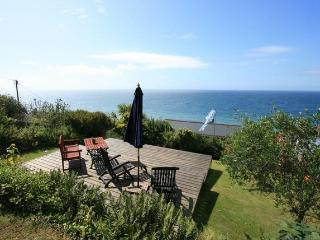 Comfortable Cottage with Internet Access and Television - Downderry vacation rentals