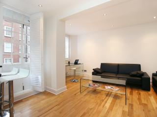1 bed in a fantastic location by Knightsbridge, Chelsea Cloisters - London vacation rentals