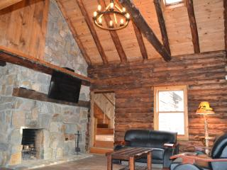 Rivefront Cozy Rustic Lodge - Bushkill vacation rentals