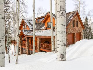 Luxurious home with a guest cabin & hot tub, 3 miles from Telluride Ski Resort! - Telluride vacation rentals