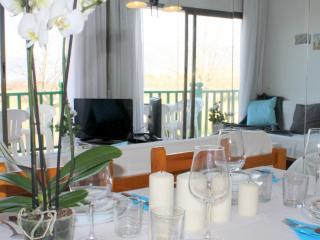Nice Condo with Internet Access and Elevator Access - Empuriabrava vacation rentals