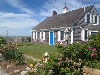 Oceanfront, Windsurfers, Sailboat Races, Ferries - West Yarmouth vacation rentals