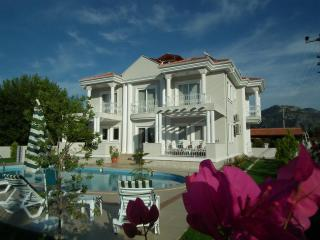 Villa Rezene PRICE REDUCED for early and late season - Dalyan vacation rentals