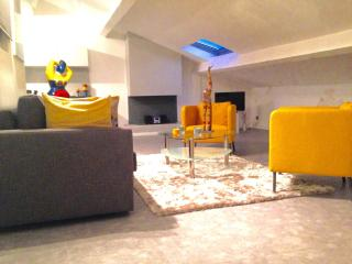 LOFT JEAN JAURE - Cannes vacation rentals