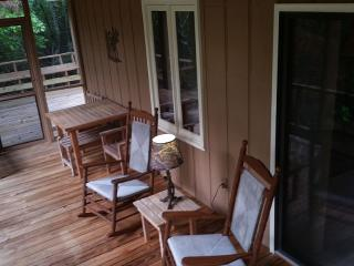 Stepp Away Mountain Laurel Cabin On The Georgia - Hiawassee vacation rentals