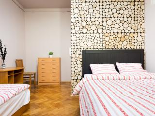 Cozy 3 bedroom Apartment in Krakow with Central Heating - Krakow vacation rentals