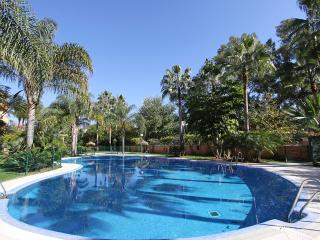 BEACHFRONT 2. LINE DUPLEX PENTHOUSE 3TERRACES POOL - Marbella vacation rentals