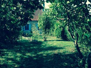 Nice House with Internet Access and Wireless Internet - Vézelay vacation rentals