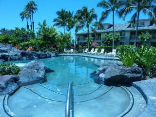 Lovely Condo with Washing Machine and Television - Waikoloa vacation rentals