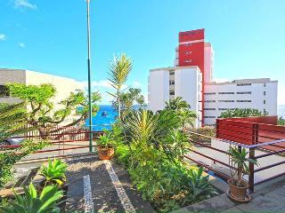 VILLA CENTRAL OF FUNCHAL - Funchal vacation rentals