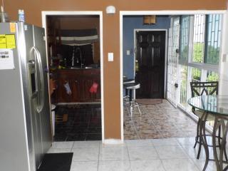 Smart Home in Montego Bay (2 Bedroom apt) - Montego Bay vacation rentals