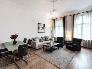 Comfortable, Homey 2 Bedroom Apartment in Berlin - Berlin vacation rentals