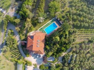 La Villa dell'Artista (Villa Anna) - Santarcangelo di Romagna vacation rentals