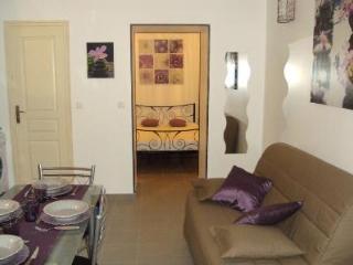Appartement saisonnier proche de corte - Corte vacation rentals