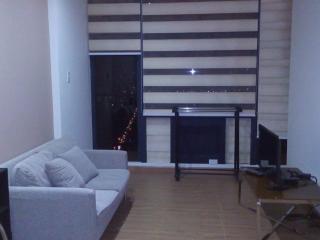 Gramercy one bedroom unit. - Makati vacation rentals