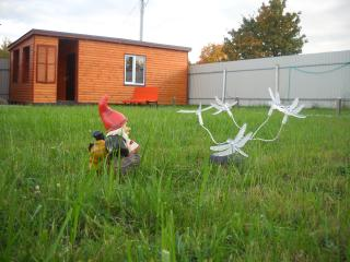 Bungalow beside Peterhof and Pulkovo airport-vol.2 - Krasnoselsky District vacation rentals