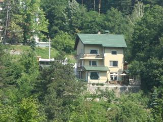 Comfortable 1 bedroom Vacation Rental in Kostenets - Kostenets vacation rentals