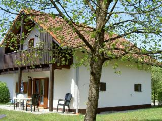 Nice House with Satellite Or Cable TV and Parking - Vilshofen vacation rentals