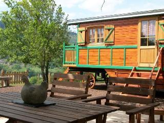 Roulotte insolite et écologique en Ardèche - Saint-Jean-le-Centenier vacation rentals