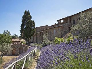 Holidayhome Borgo San Vincenti, Chianti Tuscany - Gaiole in Chianti vacation rentals