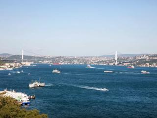 Magnificent Bosphorus View! - Istanbul vacation rentals