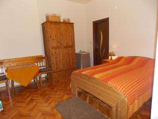 Nice Villa with Internet Access and Kettle - Timisoara vacation rentals