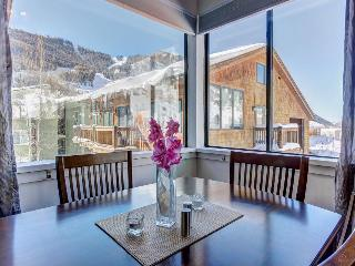 Sunny Mountain Views, Full Kitchen, Hot Tub, Walk to Festival Events & Trailhead - Telluride vacation rentals