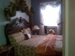 Furnished room in the house in the dreamland - Brooklyn vacation rentals