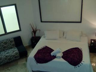 Great Studio, Private Terrace, Jacuzzi and Kitchen - Playa del Carmen vacation rentals