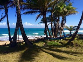 Señora Casa - Beautiful oceanfront house - Arecibo vacation rentals