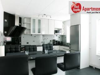 Stylish And Modern Scandinavian Apartment - 7197 - Malmö vacation rentals