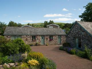 Lovely 2 bedroom Cottage in Llangynidr - Llangynidr vacation rentals