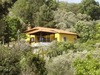 Forest house with spectacular sea view - Vyzitsa vacation rentals