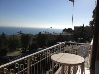3 bedroom House with A/C in Ospedaletti - Ospedaletti vacation rentals