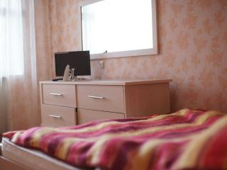 Bright 3 bedroom Condo in Ulyanovsk with Internet Access - Ulyanovsk vacation rentals