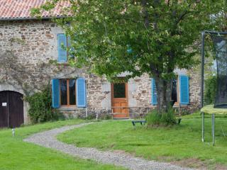 Luxe 100 jaar oud gerenoveerd familie huis - Cheissoux vacation rentals